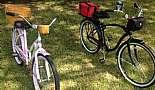 2011 Schwinn Sanctuary with custom mounted hand made baskets and 2012 Schwinn Del Mar